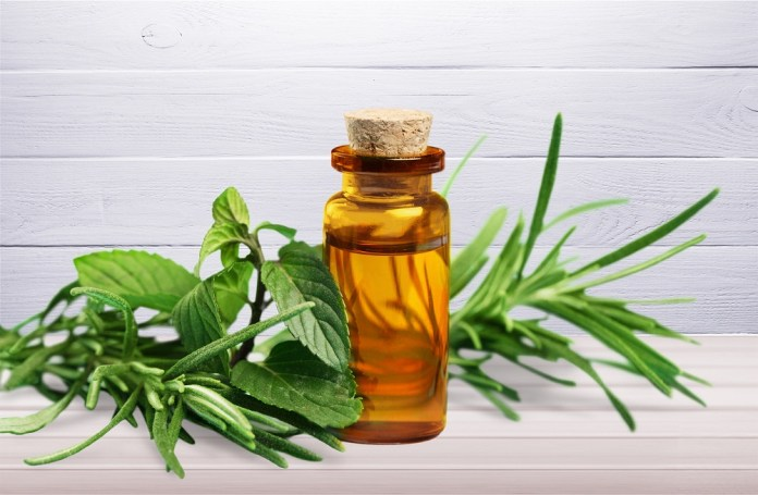 tea tree essential oil for neck pain