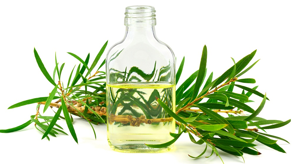 tea tree oil for dry vagina