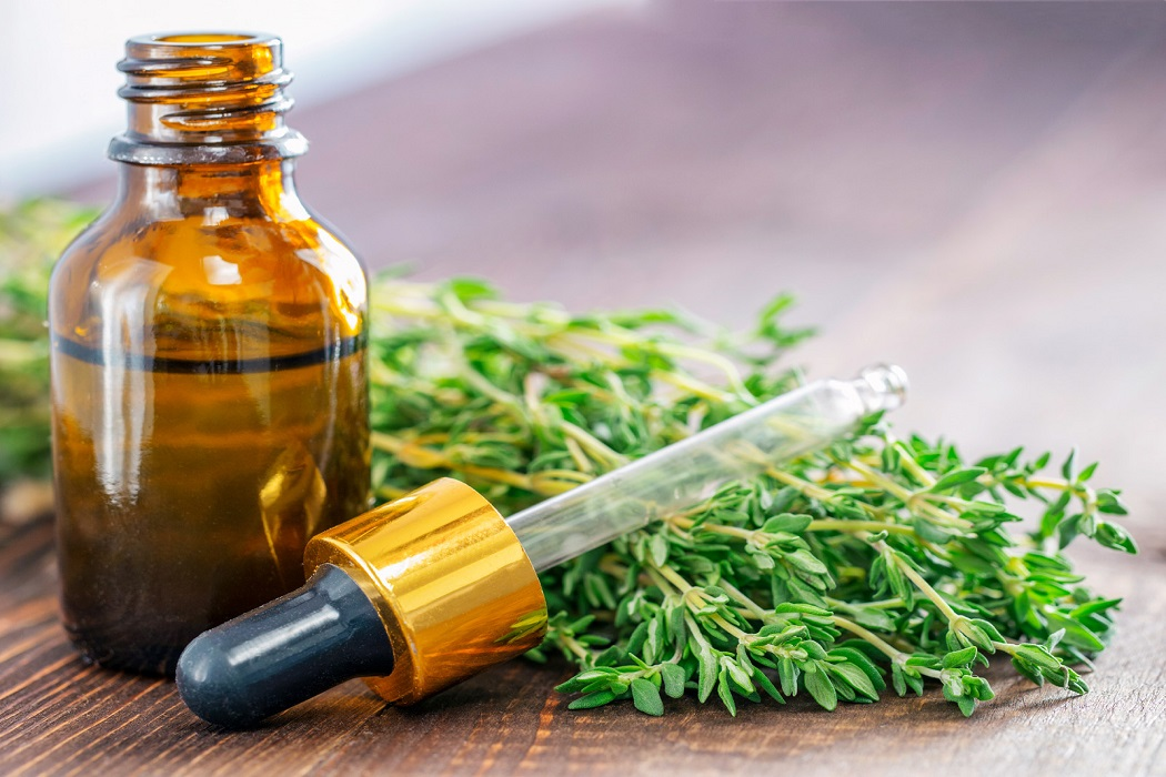 thyme essential oil for fungal infections
