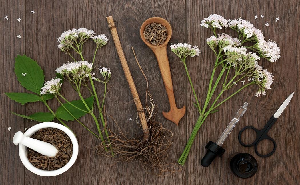 valerian root essential oil for detox