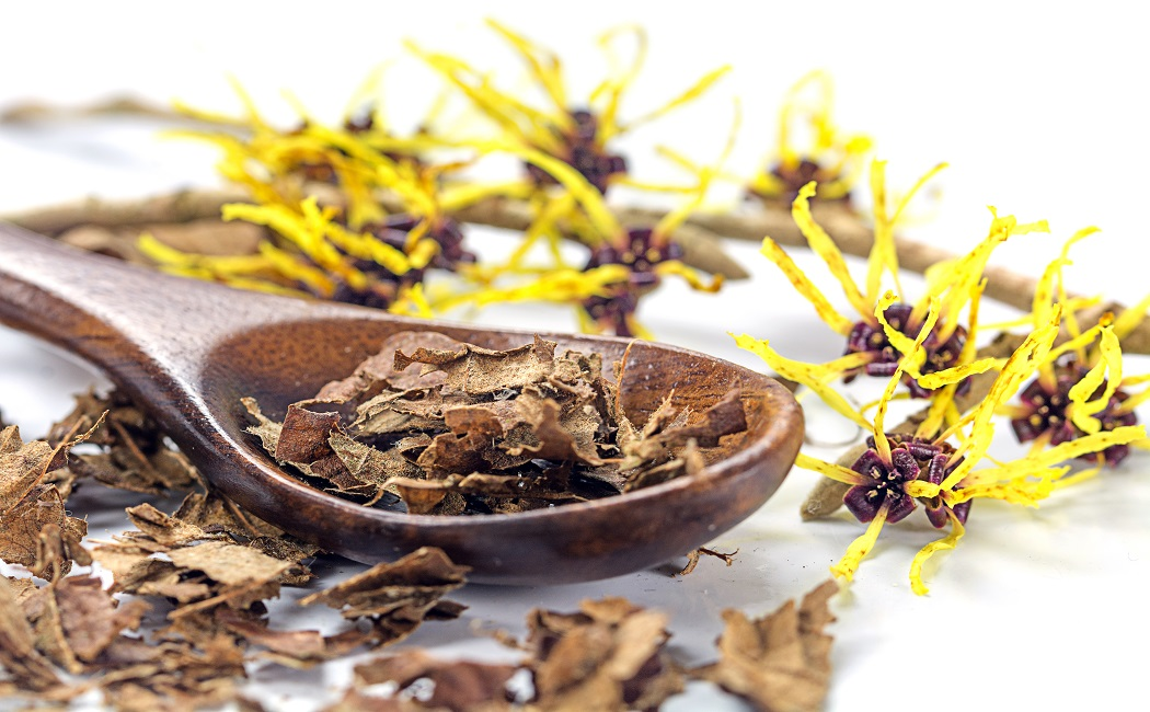 witch hazel for Treat eye bags