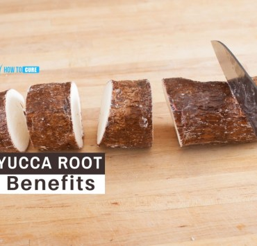 yucca root benefits
