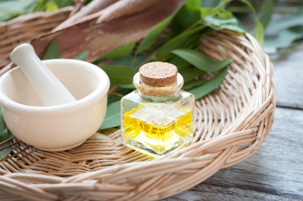 Eucalyptus oil-min