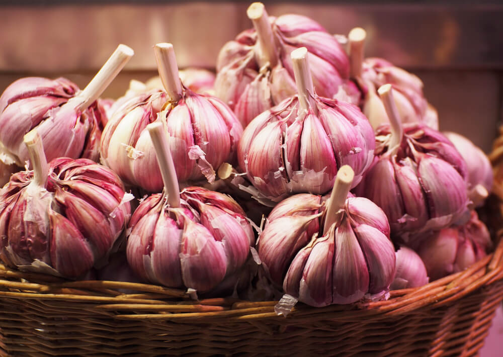 Garlic for MRSA