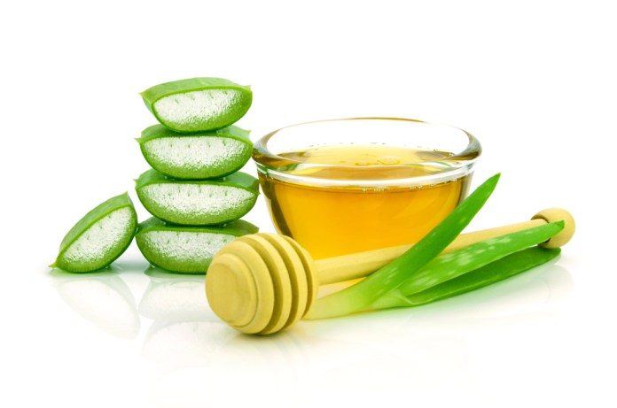 aloe and honey for hair