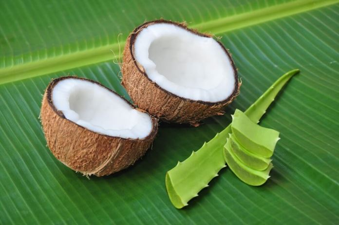 Coconut and Aloe for hair