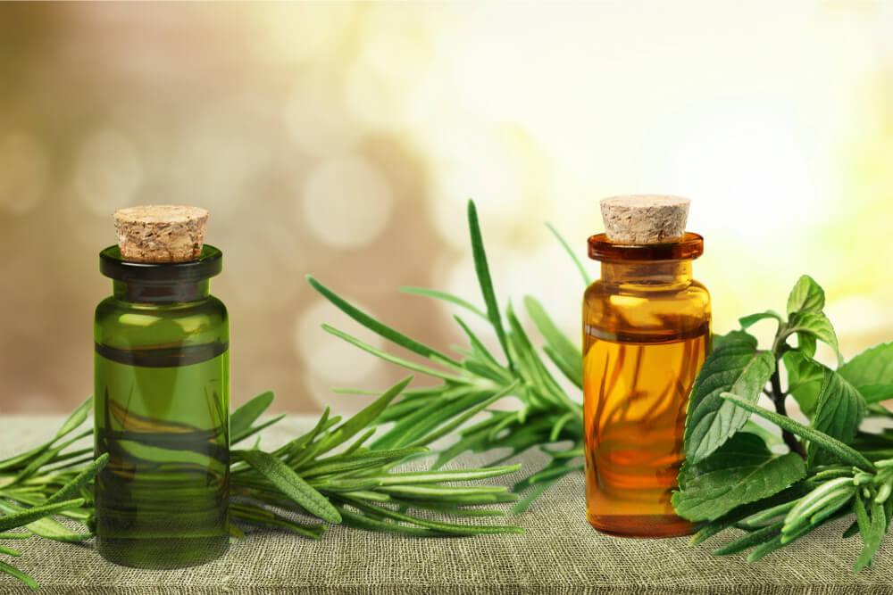 tree tea oil for stress rash
