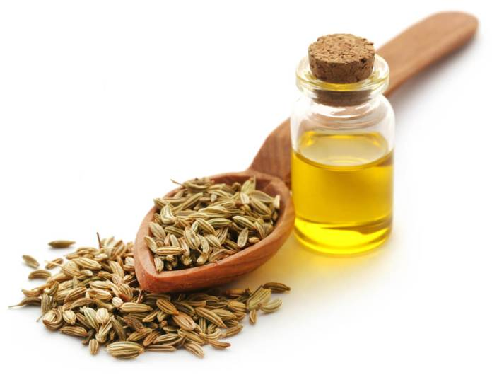 Benefits of Fennel essential oil