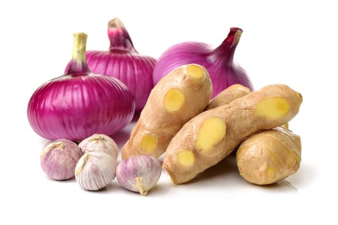 garlic and onions for hair growth