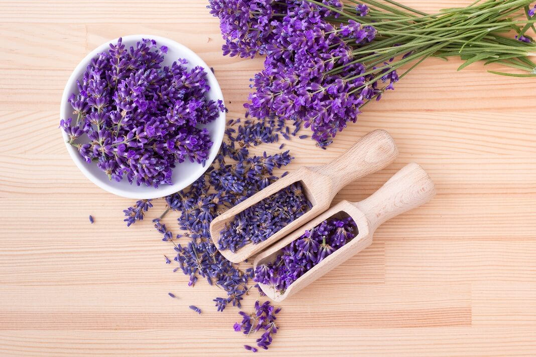 Lavender for hair growth