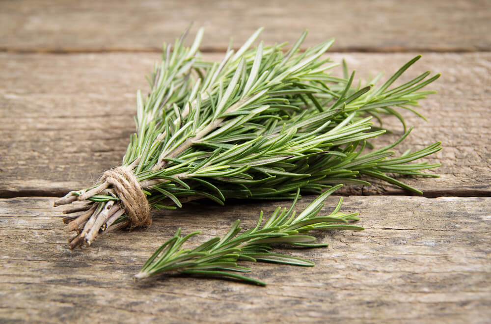 Rosemary for hair growth