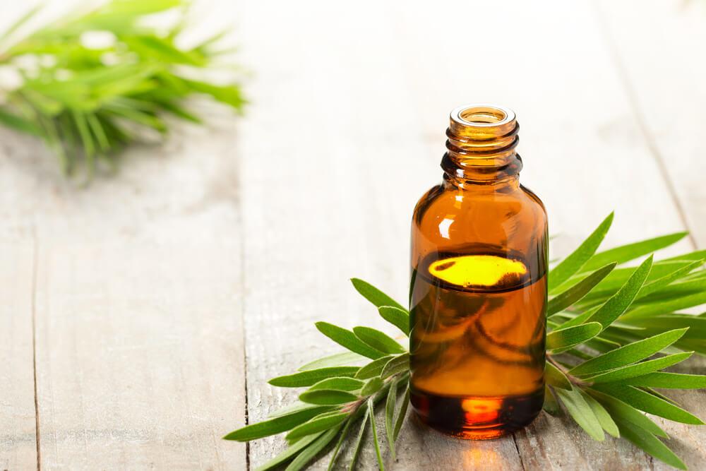 Tea tree oil for ear