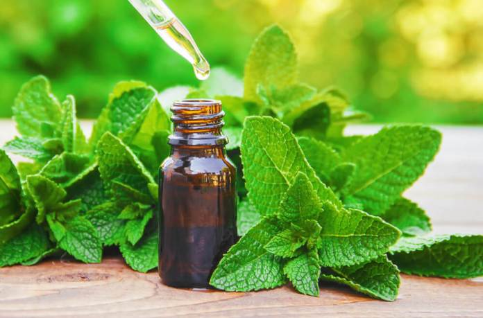 peppermint oil drops for headaches