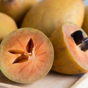 Benefits of Sapodilla
