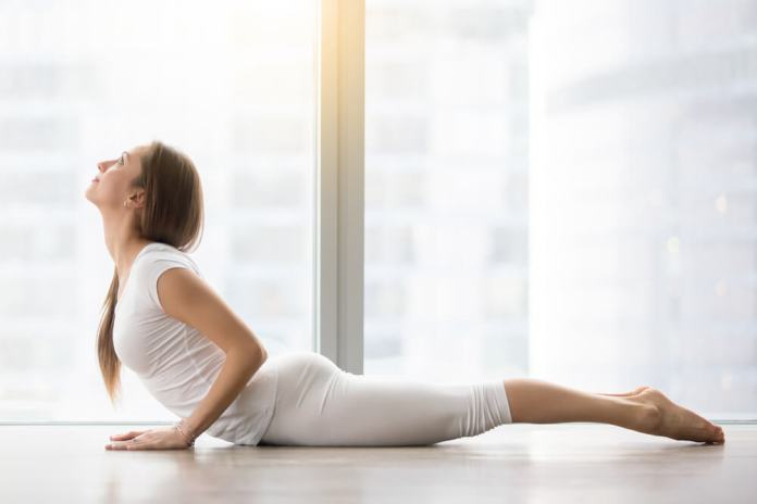 Bhujangasana or the Cobra Pose
