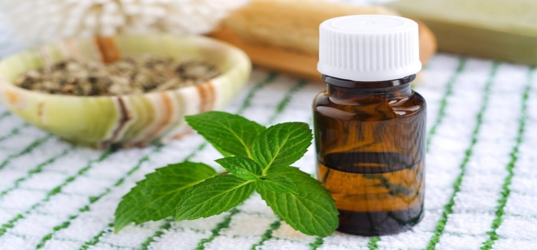 Spearmint essential oil benefits