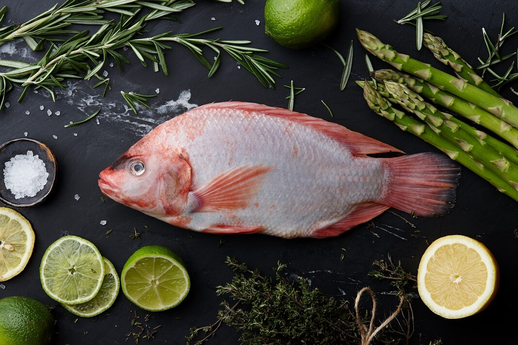 Tilapia benefits