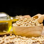 Benefits of soybean oil