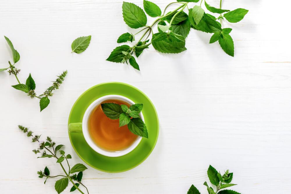 green tea healthy drink