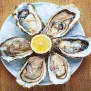 oyster benefits