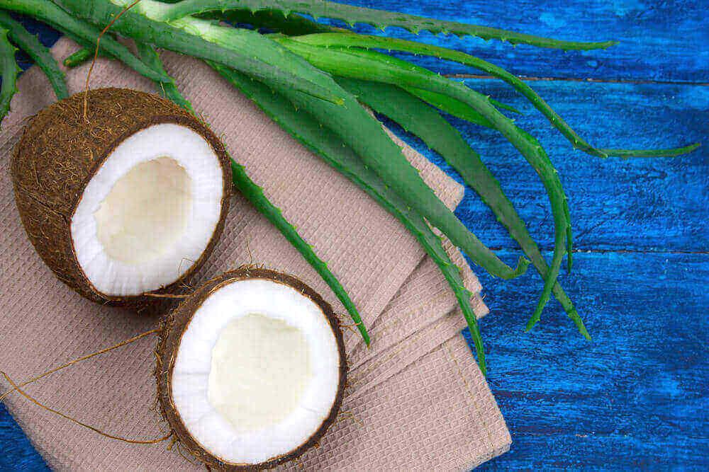Coconut Oil and Aloe Vera
