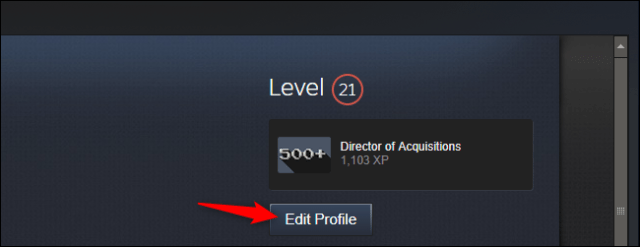 Editing your profile in Steam