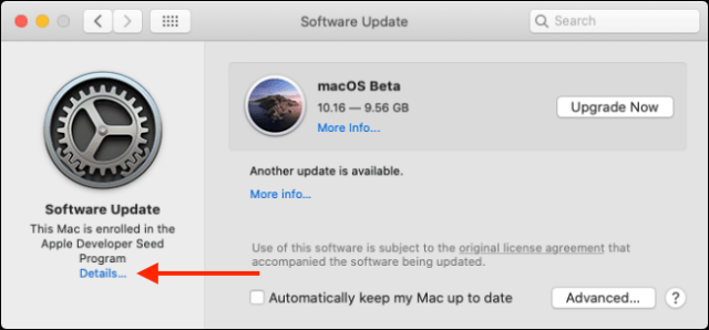 Click Details button from Software Update