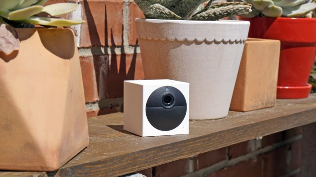 Wyze Cam Outdoor on a shelf with potted plants