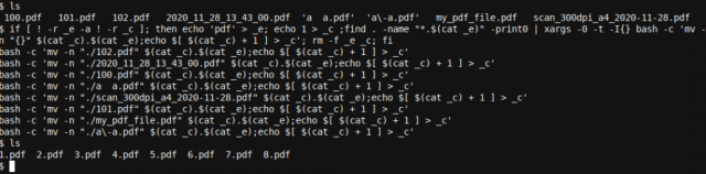 xargs with the -t option allows us to see what happens during the renaming process