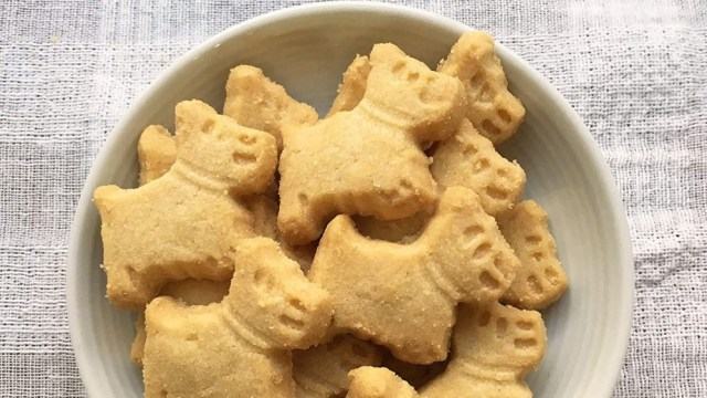 Shortbread cookies in the shape of a cute dog in a bowl.