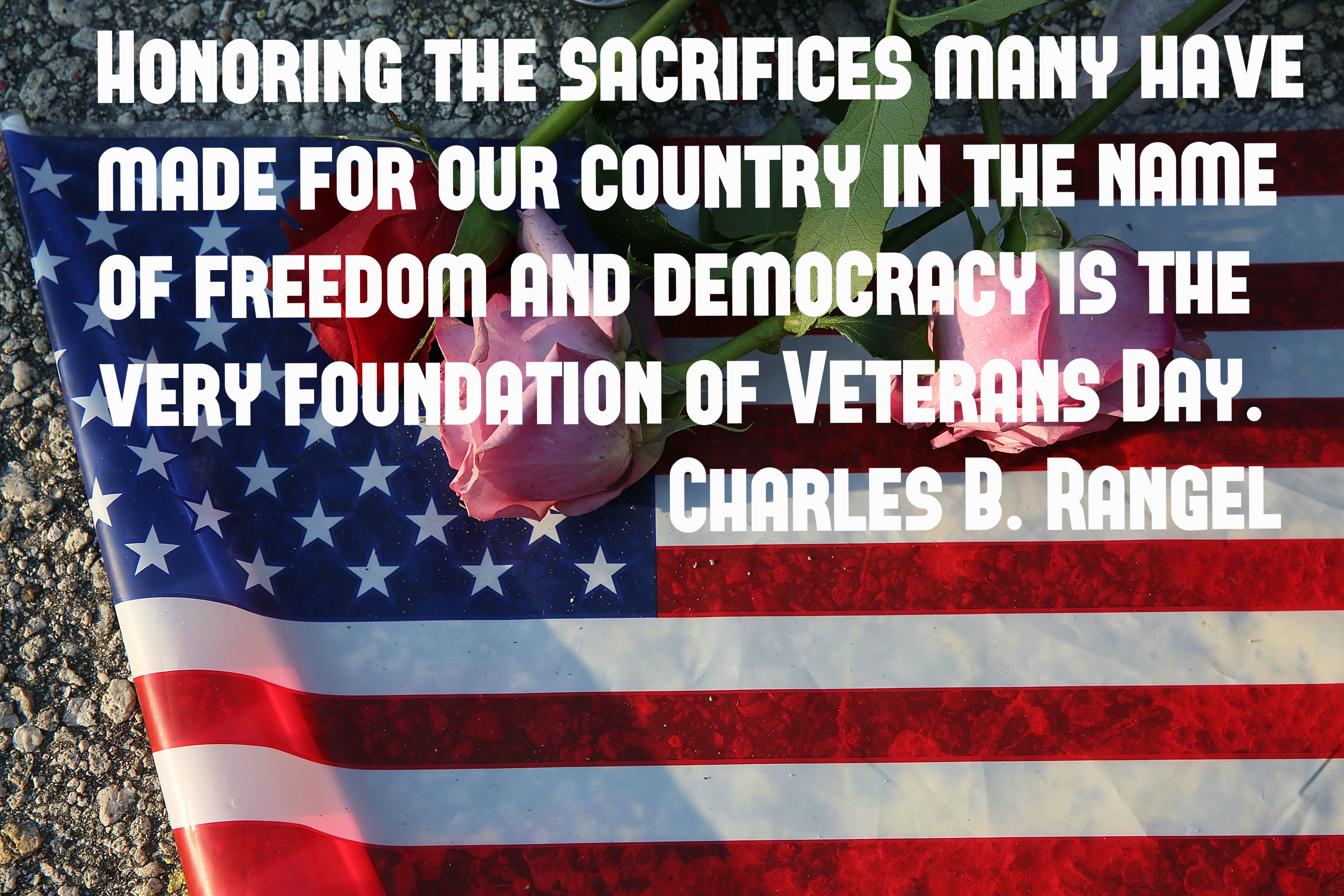 Top Quotes to Say Thank You in Veterans Day