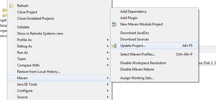 update-maven-project