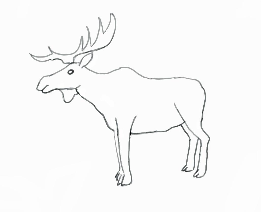 Moose Head Outline