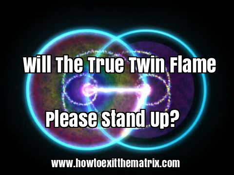 Will The True Twin Flame Please Stand Up?