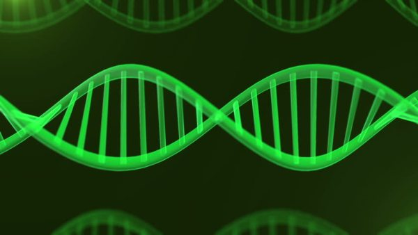 New Science- DNA Begins As A Quantum Wave