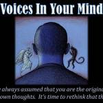Negative Voices In Your Head And The 'That's A Lie' Program
