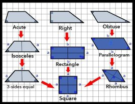 How to find the area of a rectangle