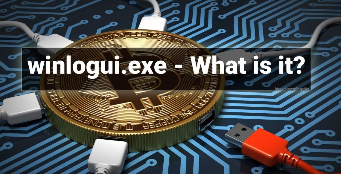 Winlogui.exe process