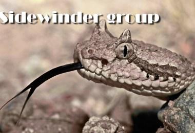 Grouping Sidewinder on Google Play