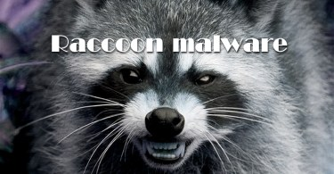 Raccoon malware steals data