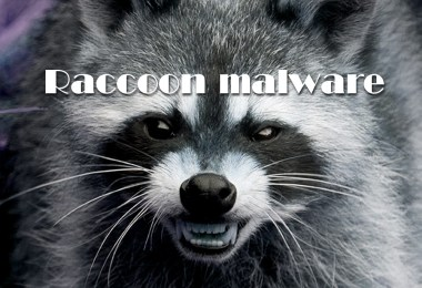 Raccoon malware steals data