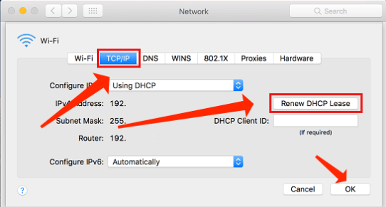 Mac TCP/IP tab Renew DHCP Lease