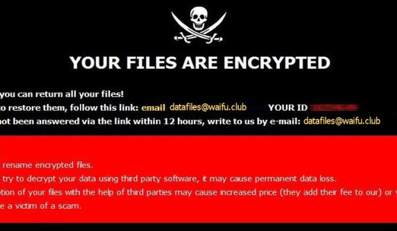 [datafiles@waifu.club].lock virus demanding message in a pop-up window