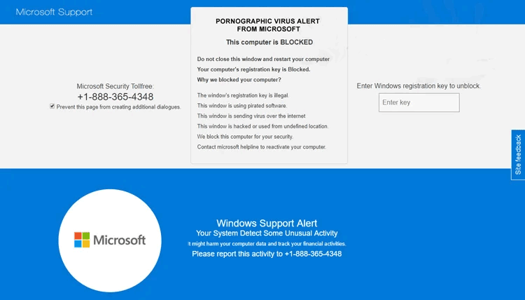 Pornographic Virus Alert from Microsoft popup