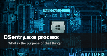 DSentry.exe process – what is it?