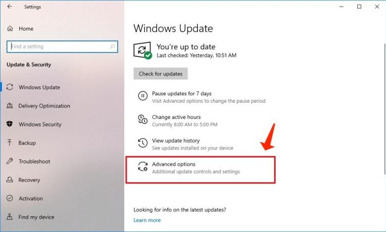 windows update - advanced options