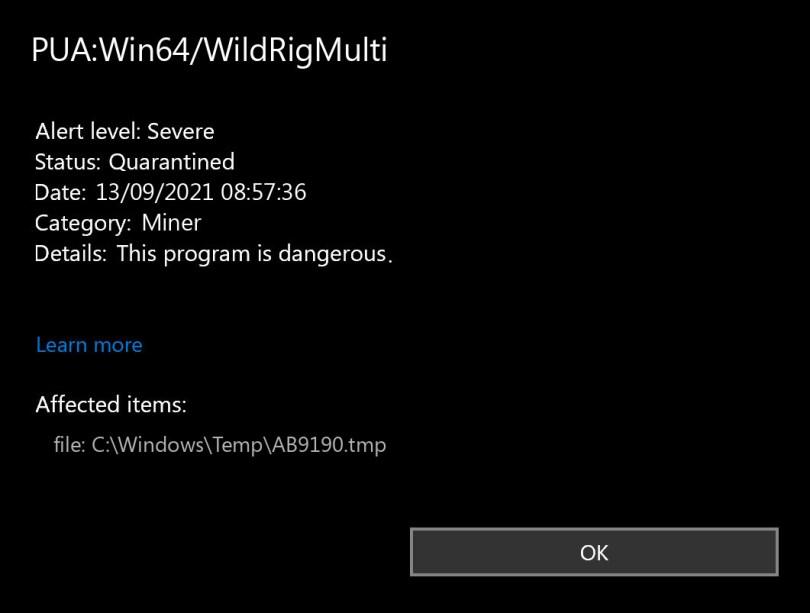 PUA:Win64/WildRigMulti found