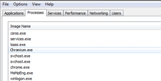 Chromium exe process in the Task Manager