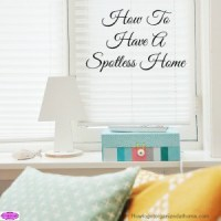 How To Have A Spotless Home