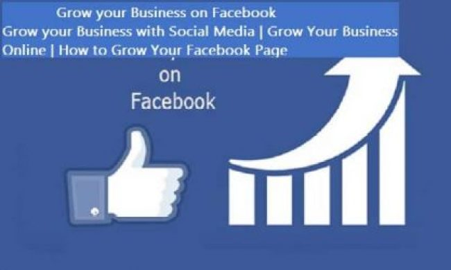 Grow your Business on Facebook - Grow your Business with Social Media   Grow Your Business Online   How to Grow Your Facebook Page